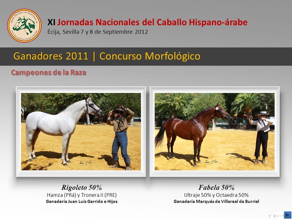 Ganadores 2011 | Concurso Morfológico