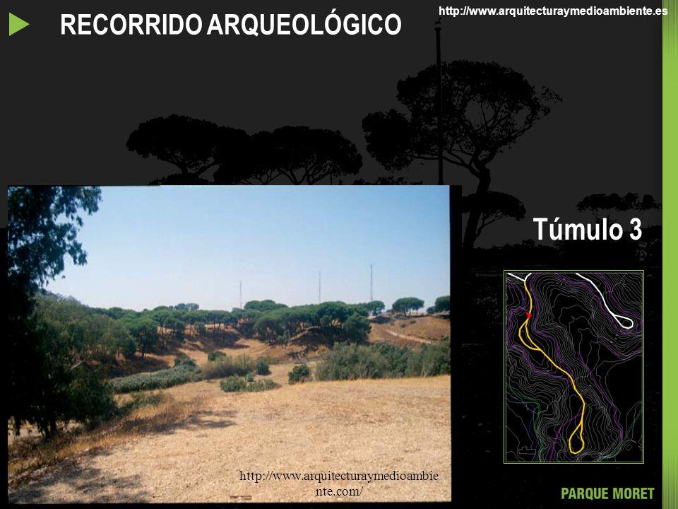 Túmulo 3 u RECORRIDO ARQUEOLÓGICO