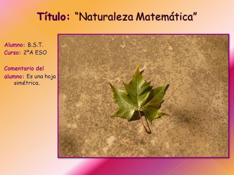 Título: Naturaleza Matemática