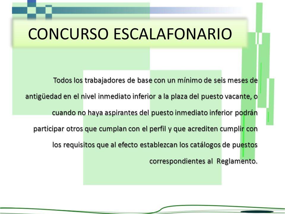 CONCURSO ESCALAFONARIO
