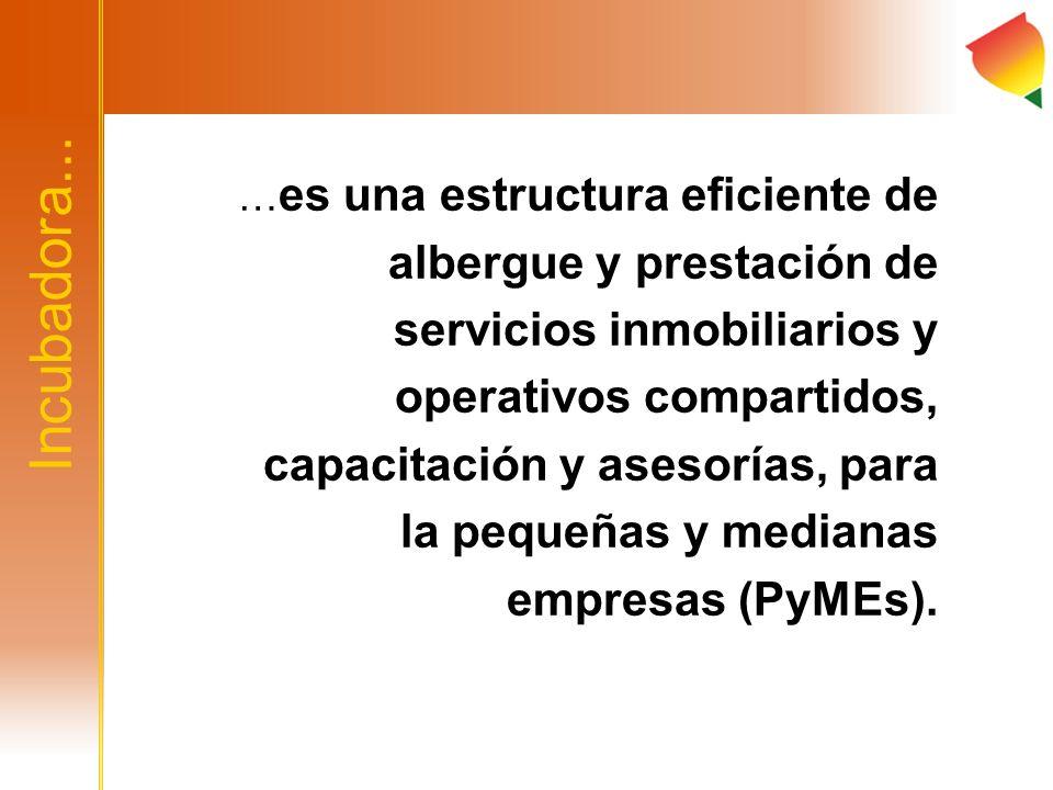 …es una estructura eficiente de albergue y prestación de servicios inmobiliarios y operativos compartidos, capacitación y asesorías, para la pequeñas y medianas empresas (PyMEs).