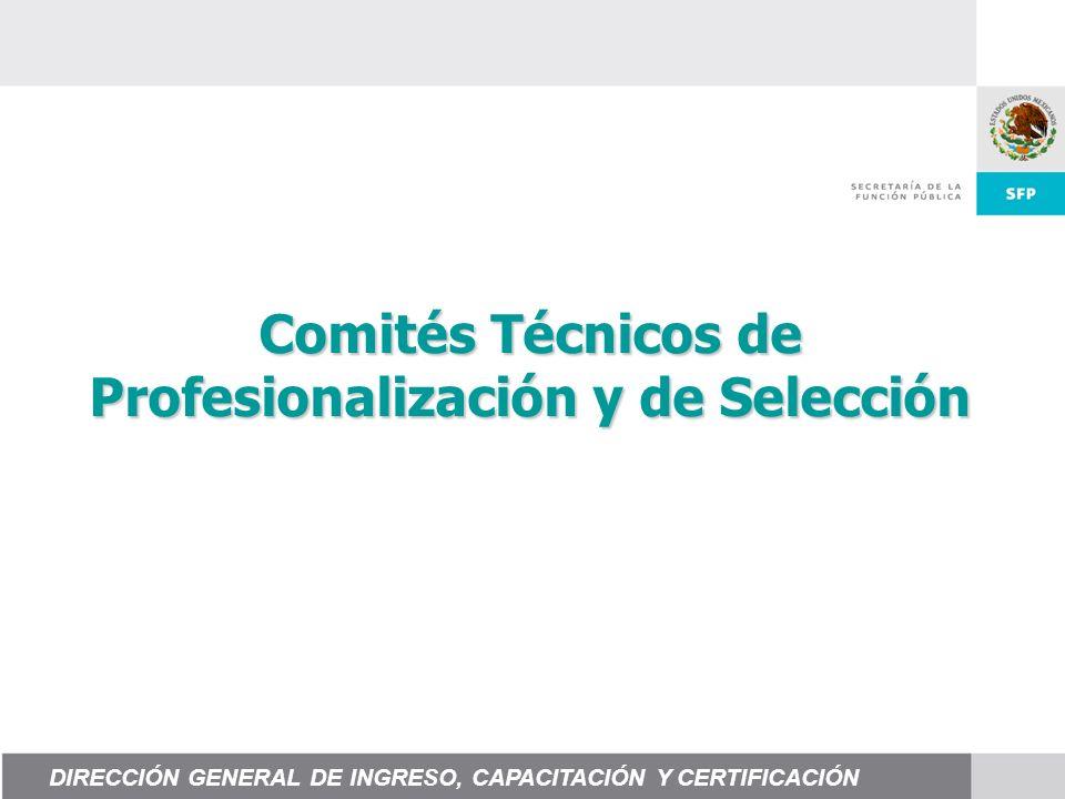 Comités Técnicos de Profesionalización y de Selección