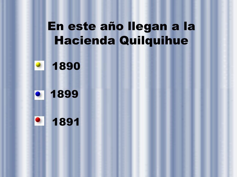 En este año llegan a la Hacienda Quilquihue