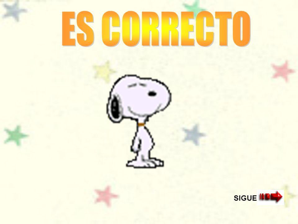 ES CORRECTO SIGUE