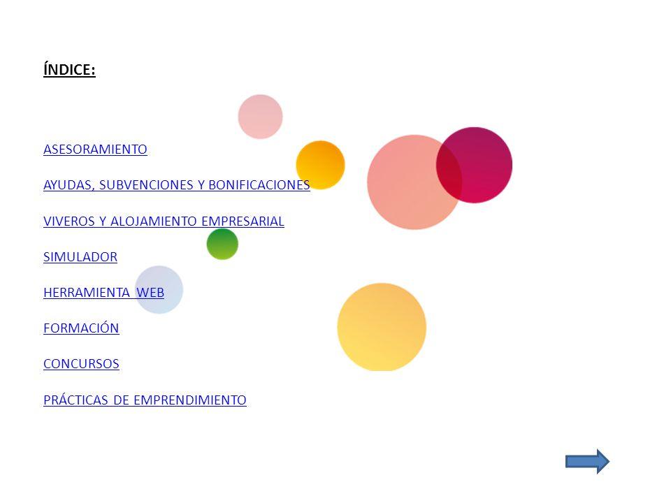 ÍNDICE: ASESORAMIENTO AYUDAS, SUBVENCIONES Y BONIFICACIONES