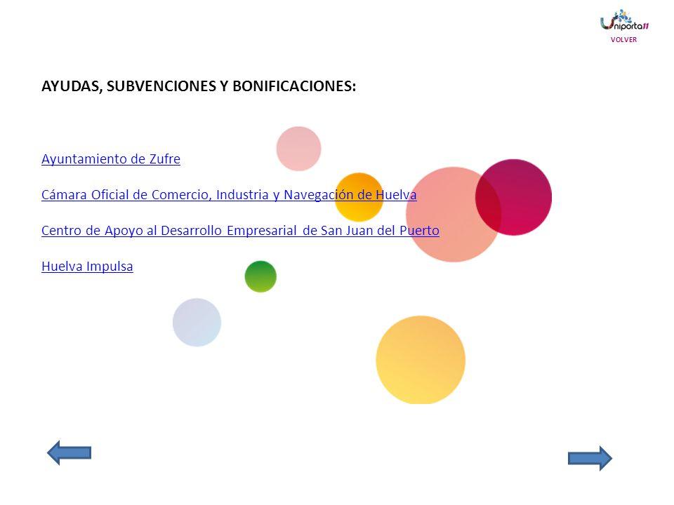 AYUDAS, SUBVENCIONES Y BONIFICACIONES: