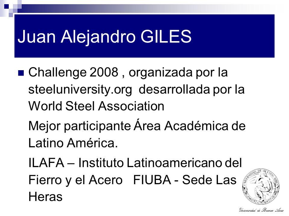 Juan Alejandro GILES Challenge 2008 , organizada por la steeluniversity.org desarrollada por la World Steel Association.
