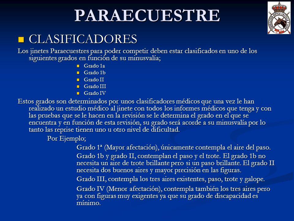 PARAECUESTRE CLASIFICADORES