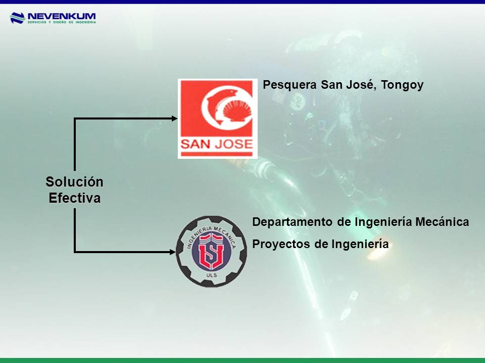 Solución Efectiva Pesquera San José, Tongoy