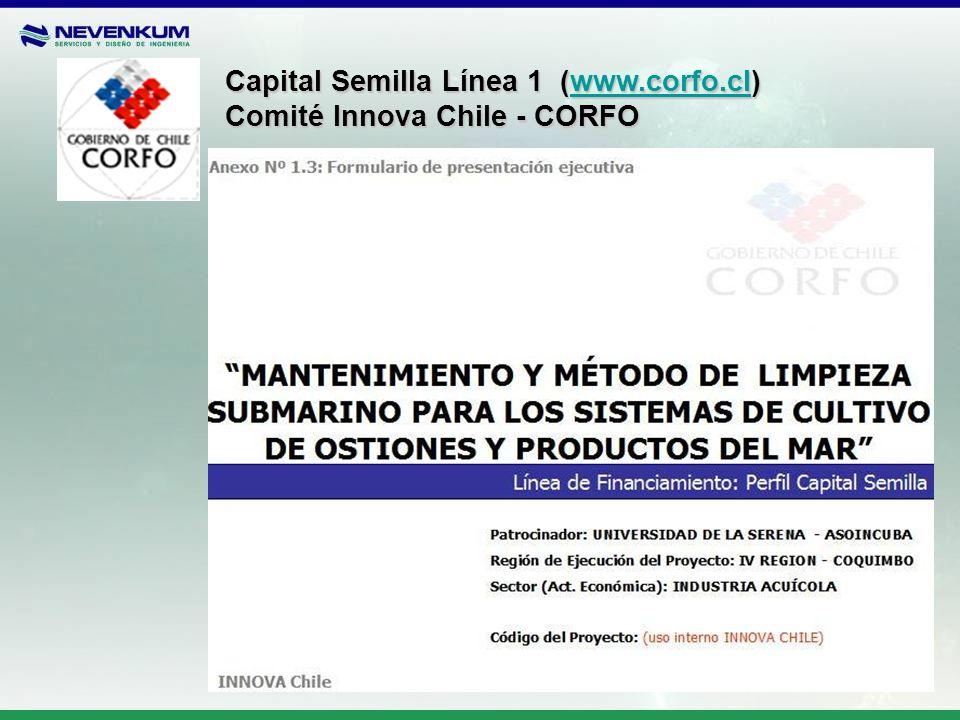 Capital Semilla Línea 1 (www.corfo.cl)