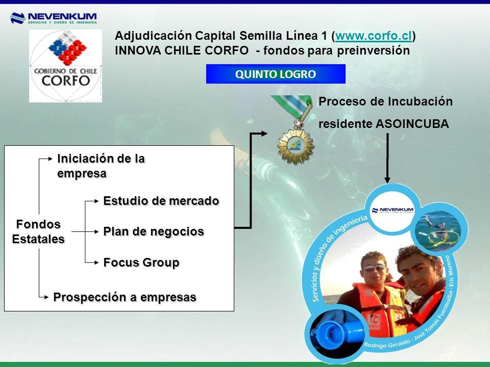 Adjudicación Capital Semilla Línea 1 (www.corfo.cl)