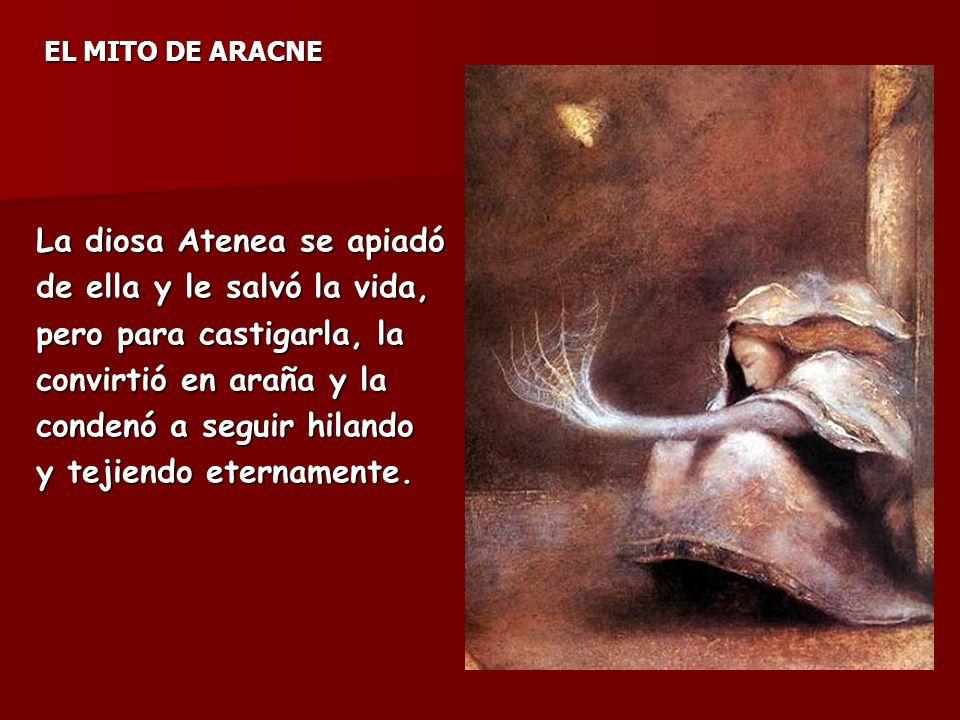 La diosa Atenea se apiadó de ella y le salvó la vida,