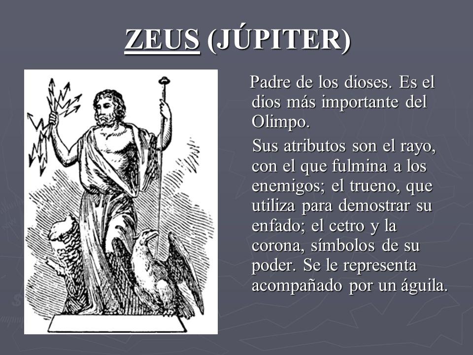 ZEUS (JÚPITER) Padre de los dioses. Es el dios más importante del Olimpo.