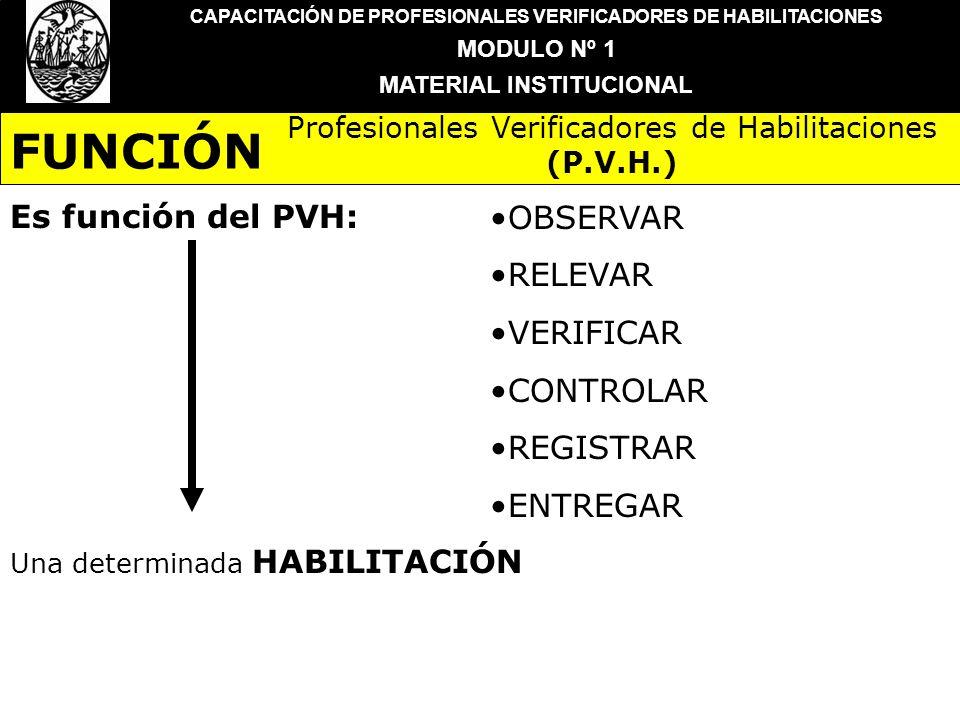 FUNCIÓN Es función del PVH: OBSERVAR RELEVAR VERIFICAR CONTROLAR