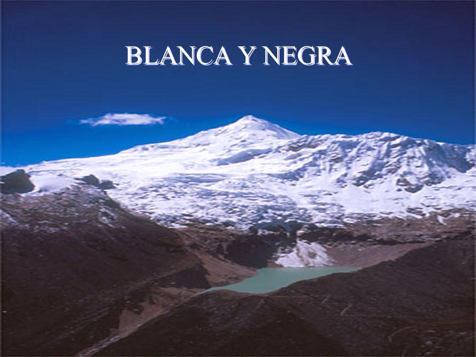 Blanca y Negra BLANCA Y NEGRA