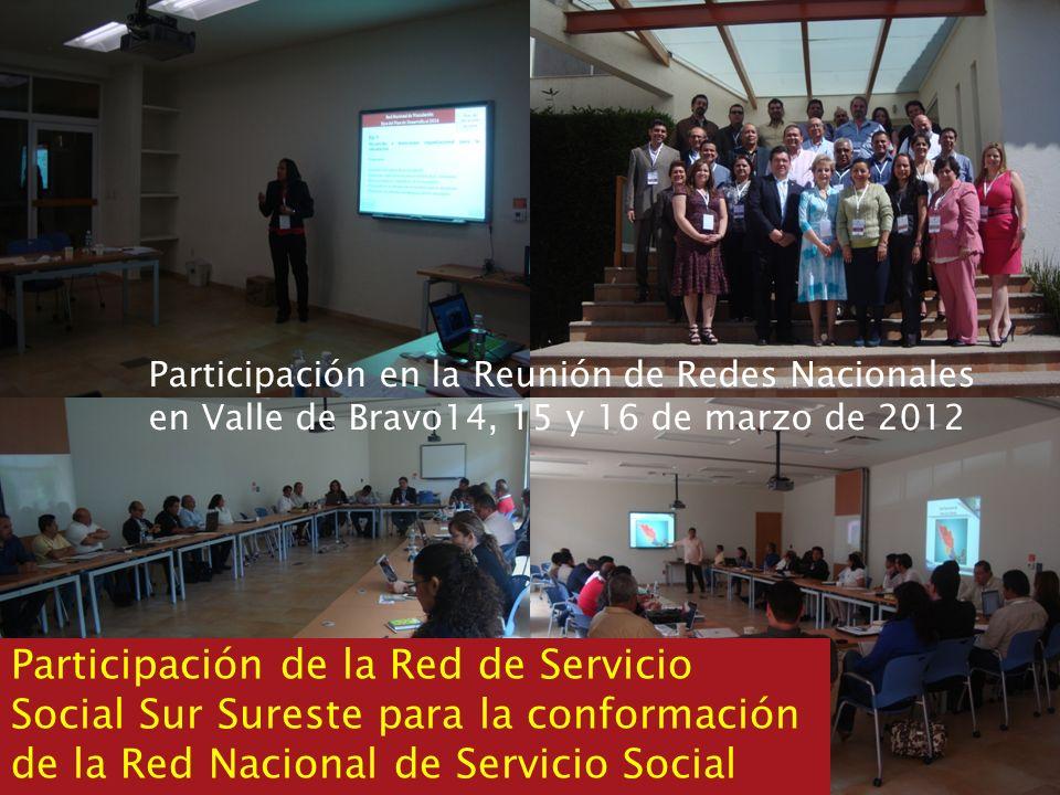Participación en la Reunión de Redes Nacionales