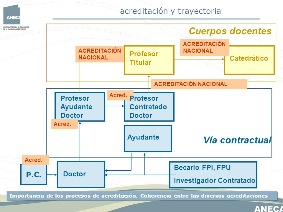 Cuerpos docentes Vía contractual acreditación y trayectoria