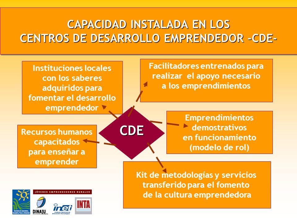 CAPACIDAD INSTALADA EN LOS CENTROS DE DESARROLLO EMPRENDEDOR -CDE-