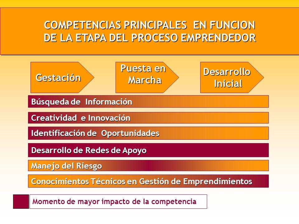 COMPETENCIAS PRINCIPALES EN FUNCION