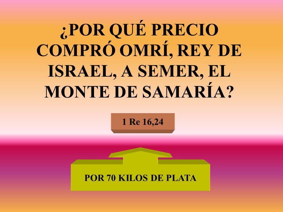 ¿POR QUÉ PRECIO COMPRÓ OMRÍ, REY DE ISRAEL, A SEMER, EL MONTE DE SAMARÍA