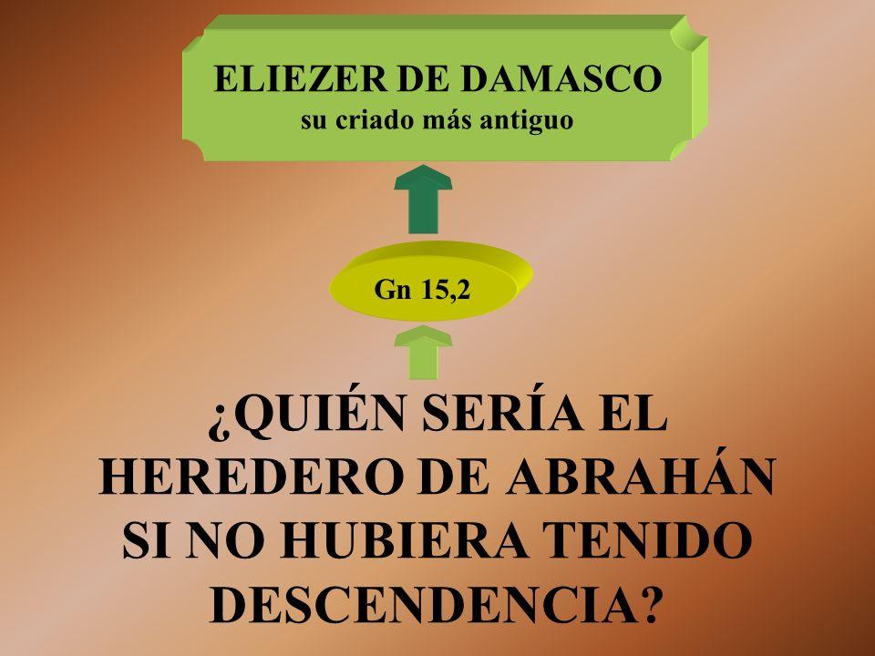 ¿QUIÉN SERÍA EL HEREDERO DE ABRAHÁN SI NO HUBIERA TENIDO DESCENDENCIA