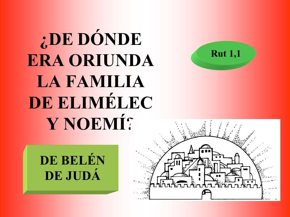 ¿DE DÓNDE ERA ORIUNDA LA FAMILIA DE ELIMÉLEC Y NOEMÍ