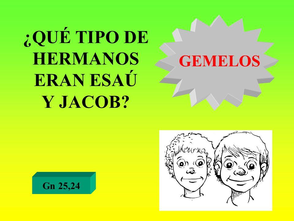 ¿QUÉ TIPO DE HERMANOS ERAN ESAÚ Y JACOB