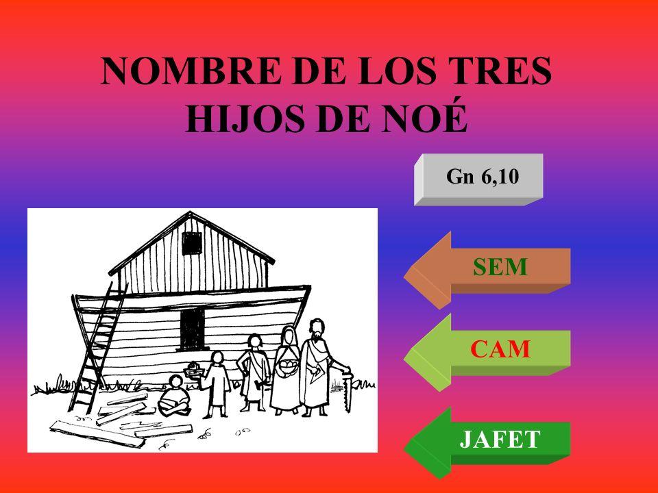 NOMBRE DE LOS TRES HIJOS DE NOÉ