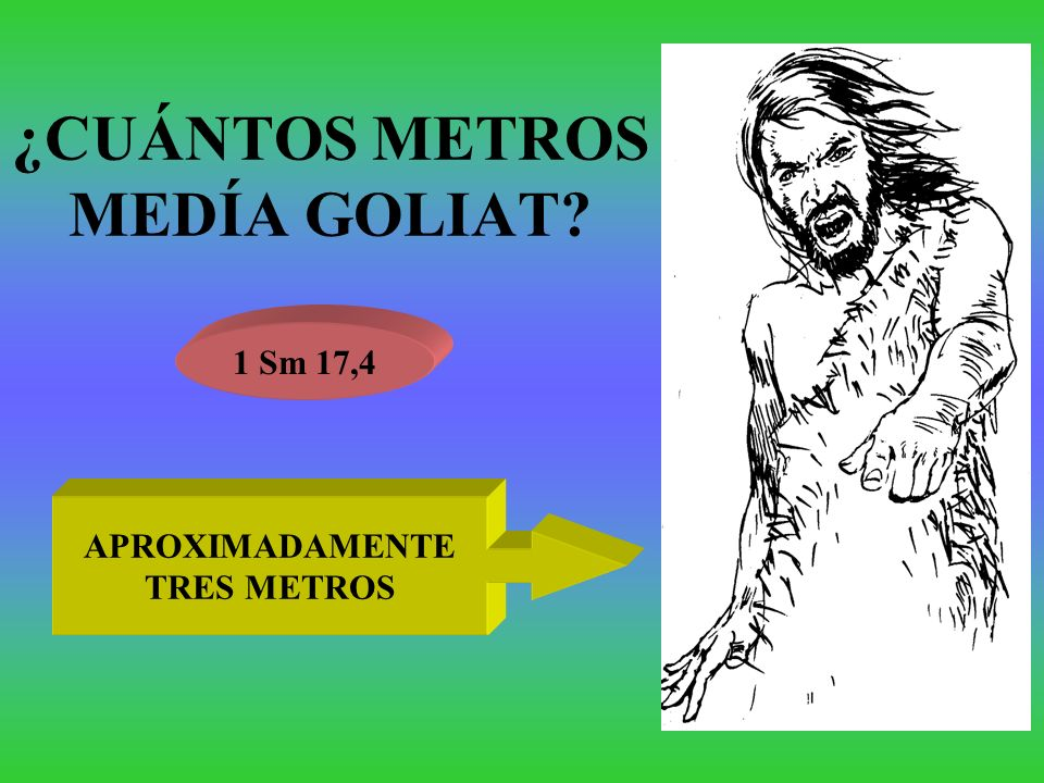 ¿CUÁNTOS METROS MEDÍA GOLIAT