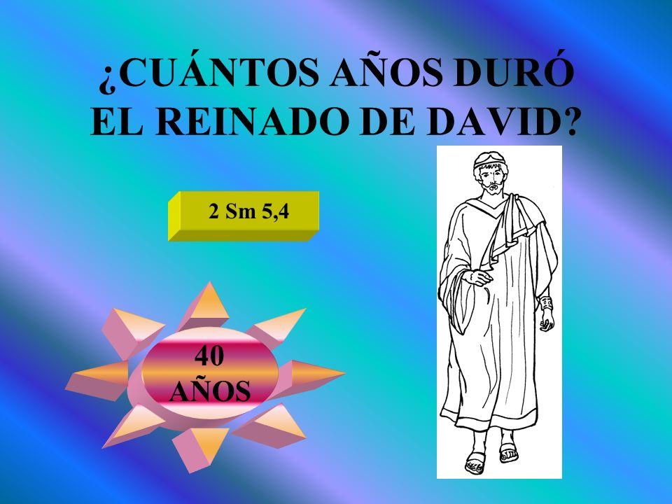 ¿CUÁNTOS AÑOS DURÓ EL REINADO DE DAVID