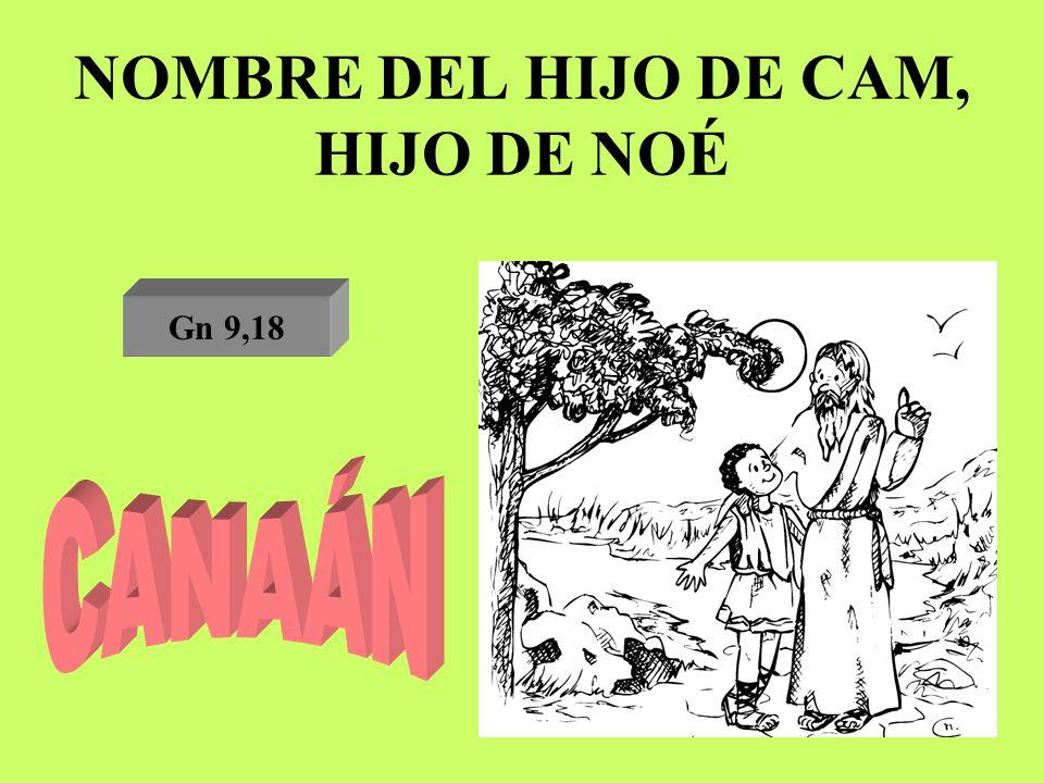 NOMBRE DEL HIJO DE CAM, HIJO DE NOÉ