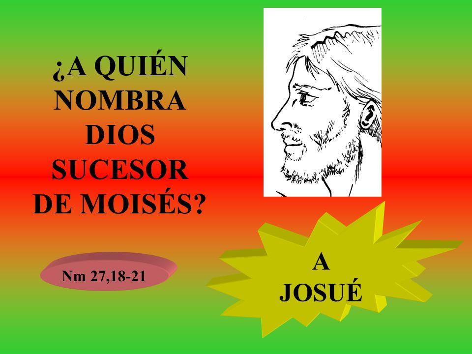 ¿A QUIÉN NOMBRA DIOS SUCESOR DE MOISÉS