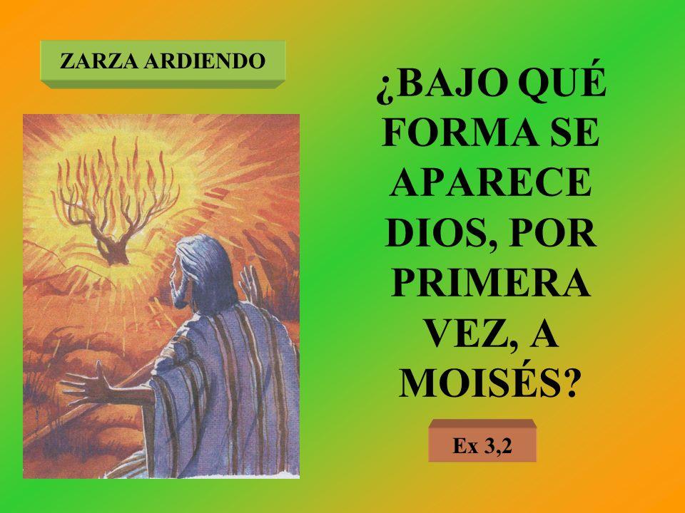 ¿BAJO QUÉ FORMA SE APARECE DIOS, POR PRIMERA VEZ, A MOISÉS