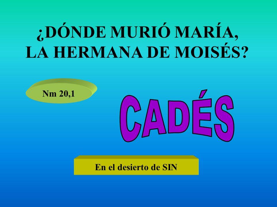 ¿DÓNDE MURIÓ MARÍA, LA HERMANA DE MOISÉS