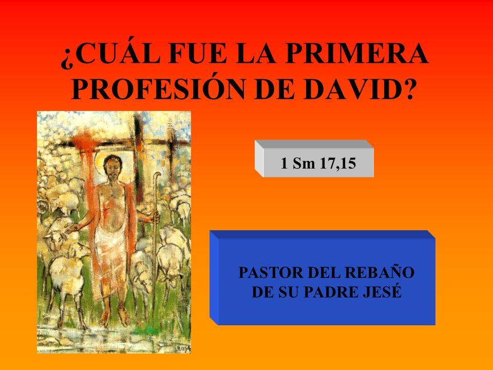 ¿CUÁL FUE LA PRIMERA PROFESIÓN DE DAVID