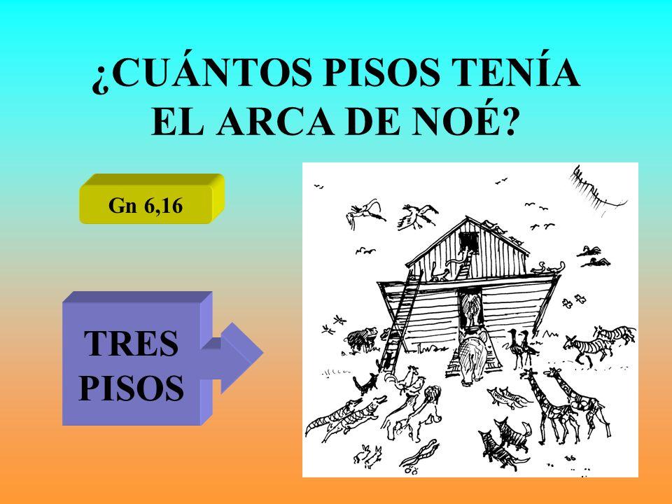 ¿CUÁNTOS PISOS TENÍA EL ARCA DE NOÉ