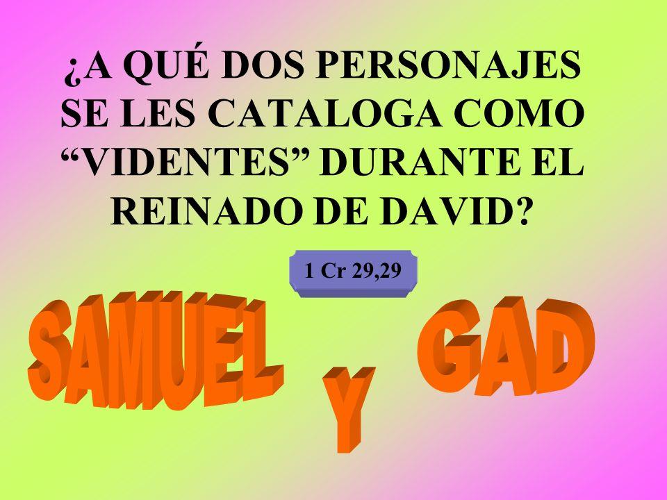 ¿A QUÉ DOS PERSONAJES SE LES CATALOGA COMO VIDENTES DURANTE EL REINADO DE DAVID