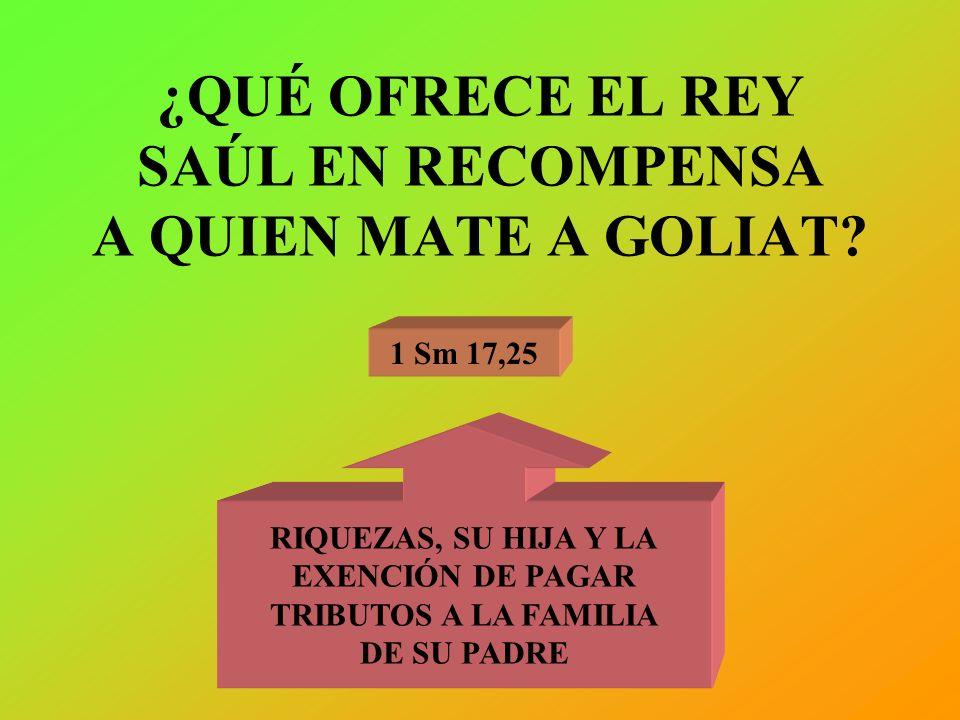 ¿QUÉ OFRECE EL REY SAÚL EN RECOMPENSA A QUIEN MATE A GOLIAT