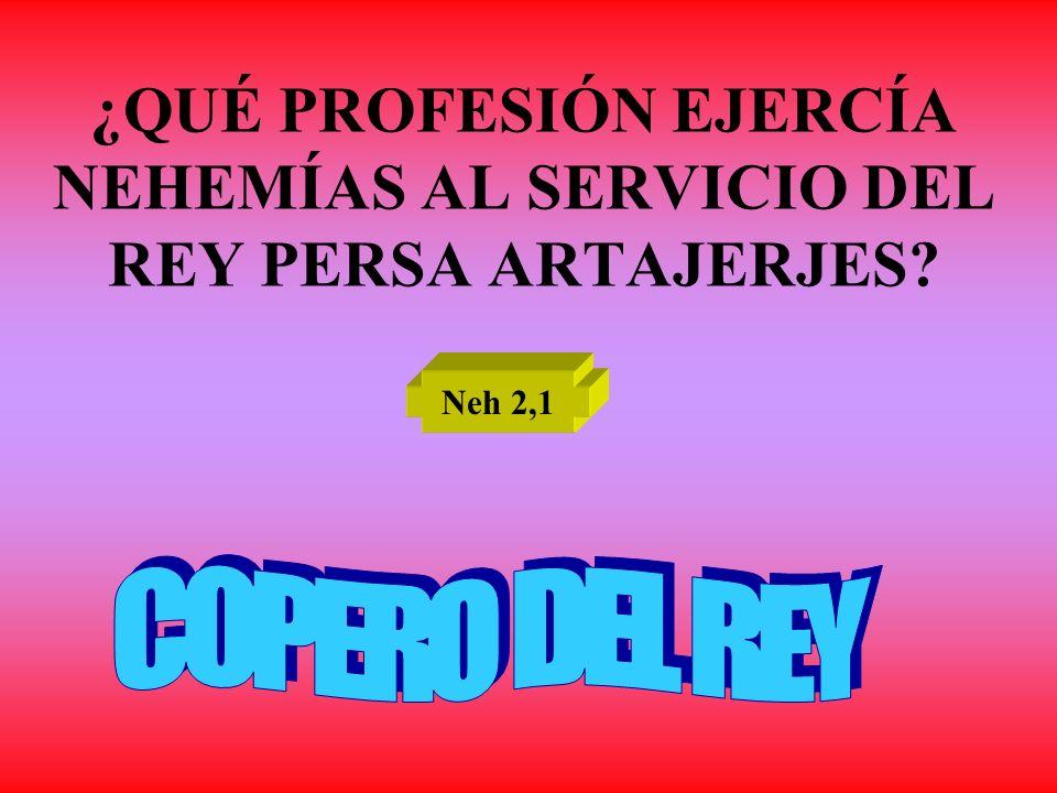 ¿QUÉ PROFESIÓN EJERCÍA NEHEMÍAS AL SERVICIO DEL REY PERSA ARTAJERJES