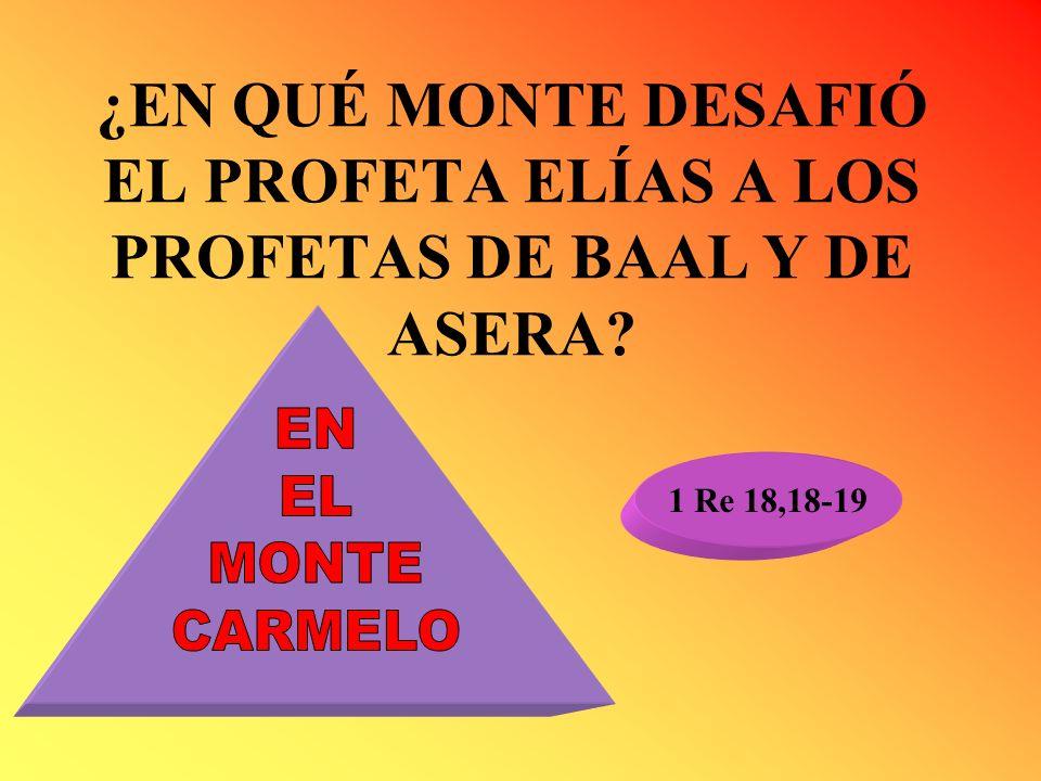 ¿EN QUÉ MONTE DESAFIÓ EL PROFETA ELÍAS A LOS PROFETAS DE BAAL Y DE ASERA
