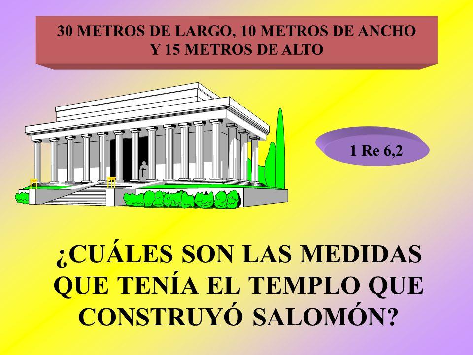 ¿CUÁLES SON LAS MEDIDAS QUE TENÍA EL TEMPLO QUE CONSTRUYÓ SALOMÓN