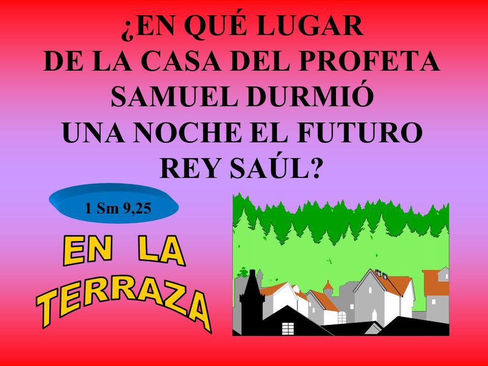 ¿EN QUÉ LUGAR DE LA CASA DEL PROFETA SAMUEL DURMIÓ UNA NOCHE EL FUTURO REY SAÚL