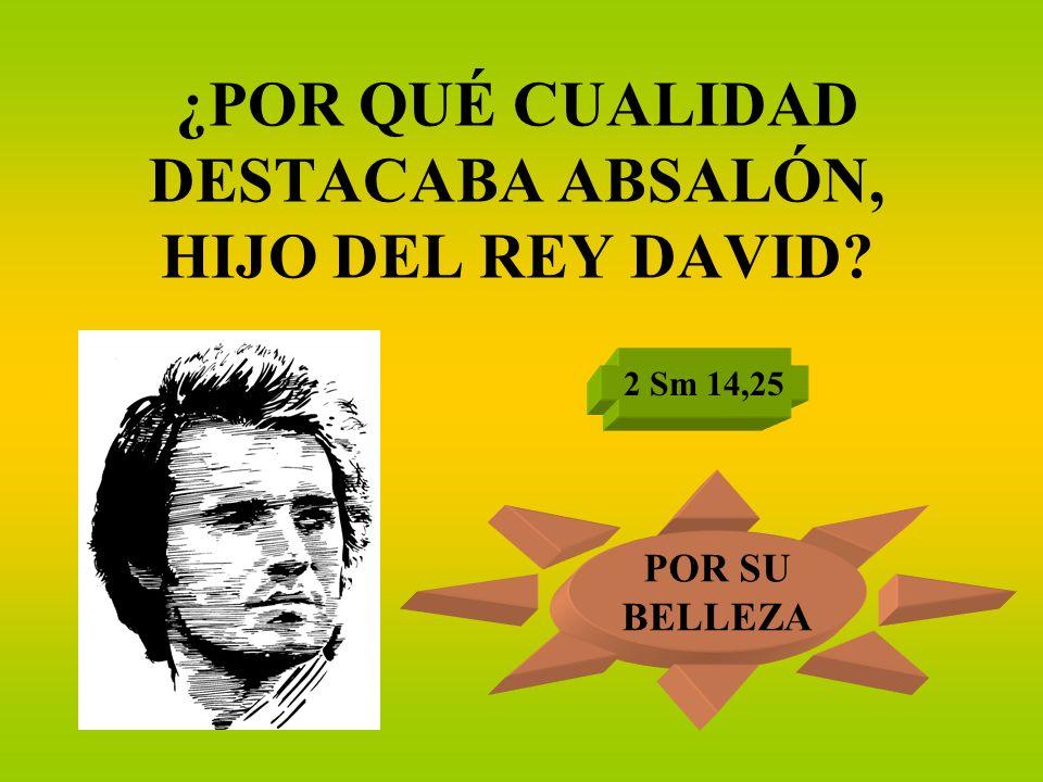 ¿POR QUÉ CUALIDAD DESTACABA ABSALÓN, HIJO DEL REY DAVID