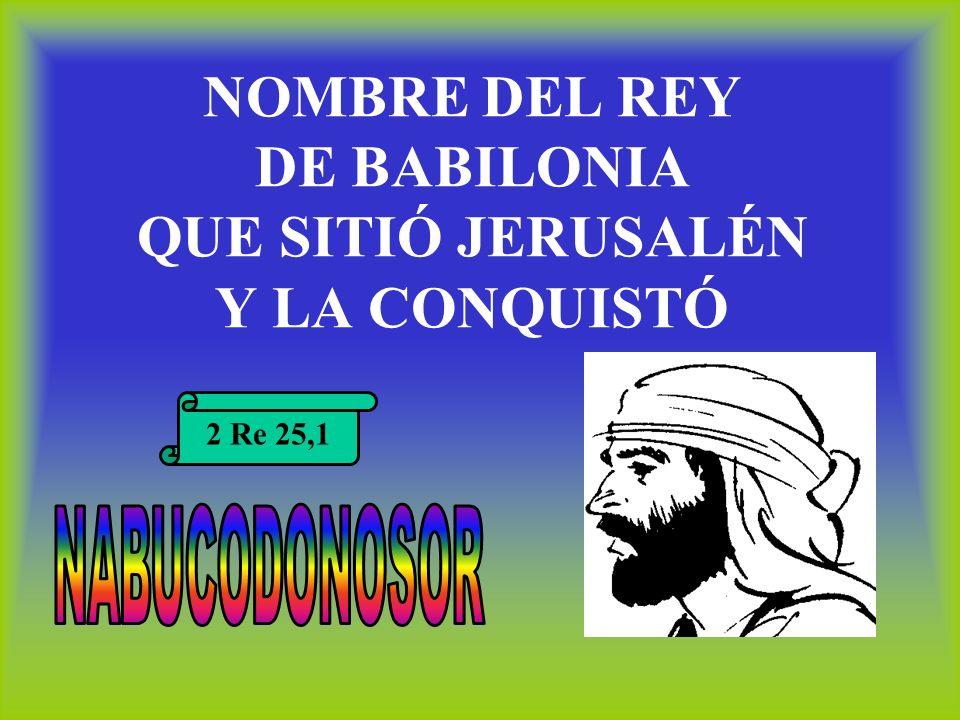 NOMBRE DEL REY DE BABILONIA QUE SITIÓ JERUSALÉN Y LA CONQUISTÓ