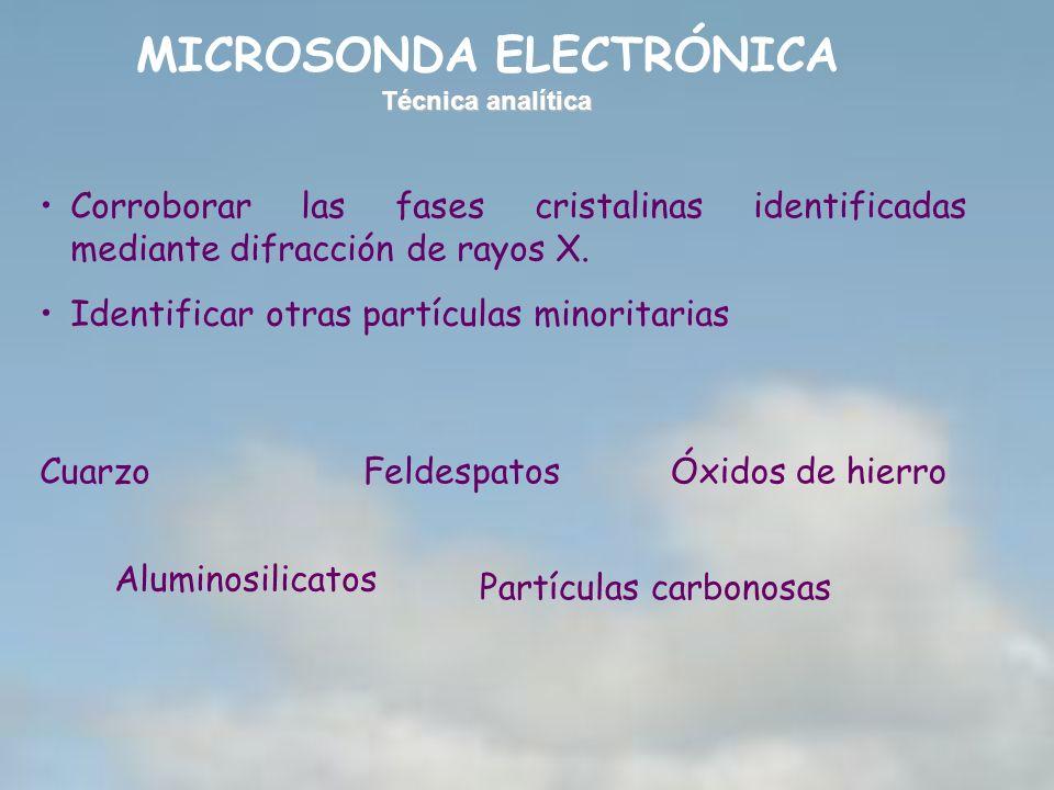 MICROSONDA ELECTRÓNICA