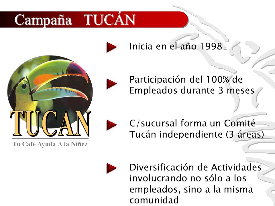 Campaña TUCÁN Inicia en el año 1998
