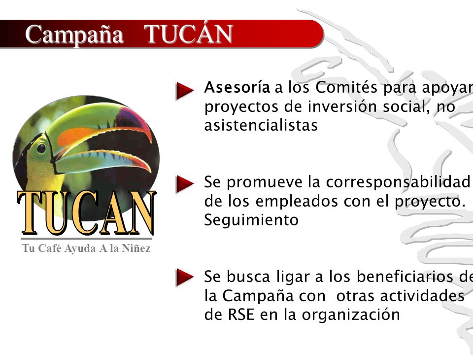 Campaña TUCÁN Asesoría a los Comités para apoyar proyectos de inversión social, no asistencialistas.