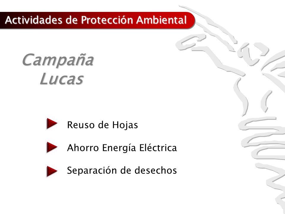 Campaña Lucas Actividades de Protección Ambiental Reuso de Hojas