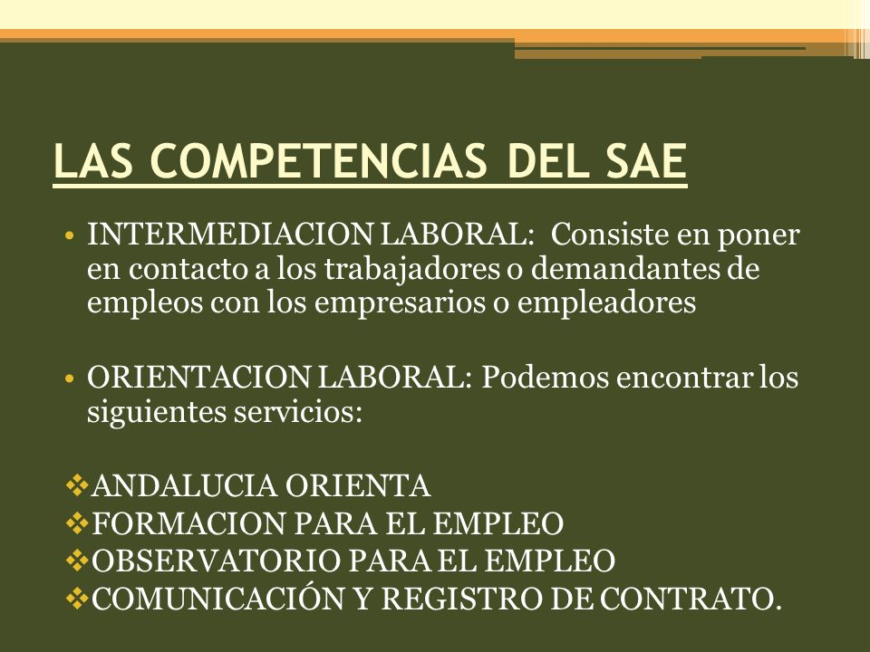 LAS COMPETENCIAS DEL SAE