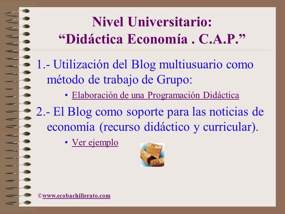 Nivel Universitario: Didáctica Economía . C.A.P.